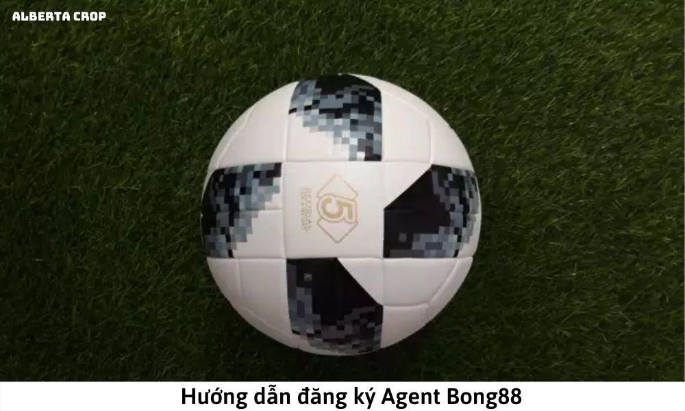 Hướng dẫn đăng ký Agent Bong88